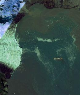 Glacier Bay 2