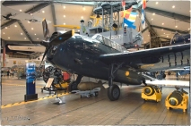National Naval Aviation Museum— TBF/TBM Avenger