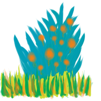 The backside of a peacock grazing in the tall grass.