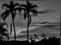 The Sky Darkens