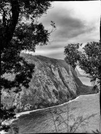 Landscape - 5