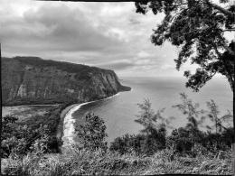 Landscape - 6