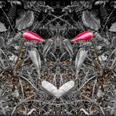 primary3APictures2FPhotoshop20Express2FPSX_20190225_175654_mirror6