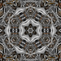 primary3APictures2FPhotoshop20Express2FPSX_20190225_175654_mirror9