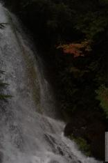 0030-Mt_Rainier_Drive