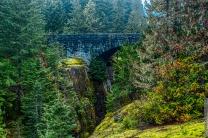 DSC_0058-Mt_Rainier_Drive 01