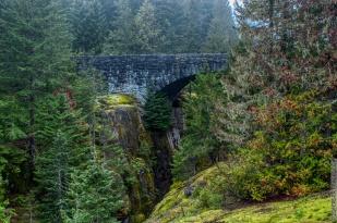 DSC_0058-Mt_Rainier_Drive 02