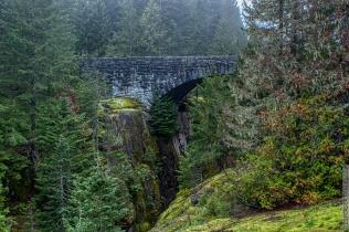 DSC_0058-Mt_Rainier_Drive