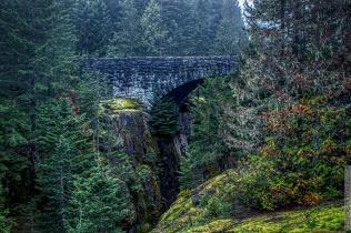 DSC_0058-Mt_Rainier_Drive 2