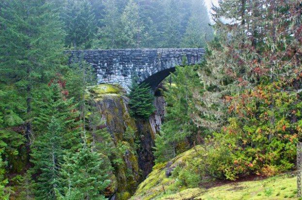 DSC_0058-Mt_Rainier_Drive_24