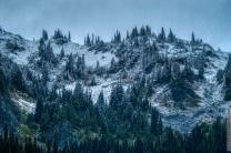 DSC_0088-Mt_Rainier_Drive 2
