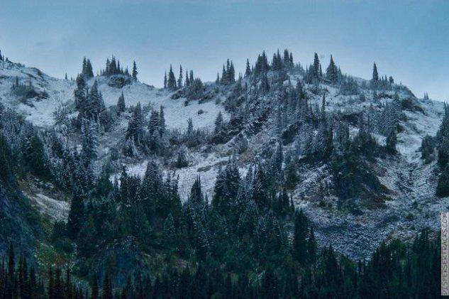 DSC_0088-Mt_Rainier_Drive_25