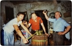 Pressing grapes in Italy (Eraldo didn't drink or smoke).