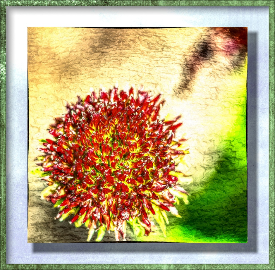 A cone flower without petals, artified