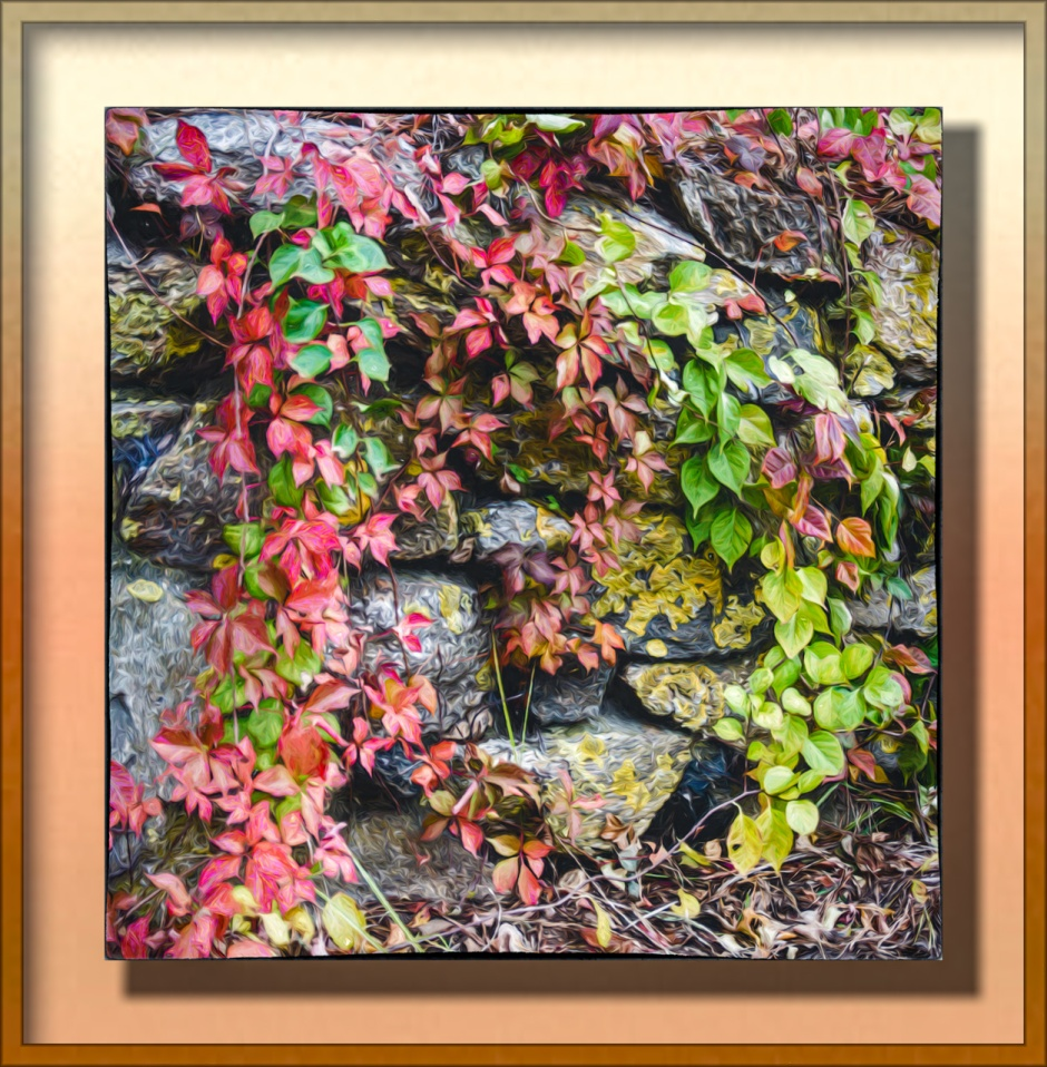 fall foliage against rock wall