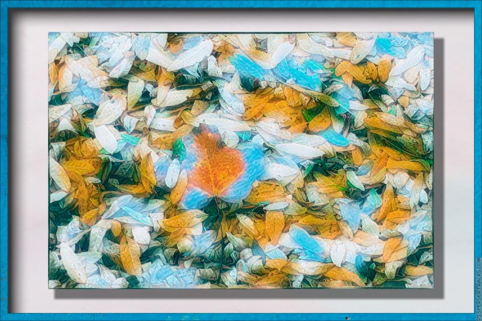 framed stylized fall leaves
