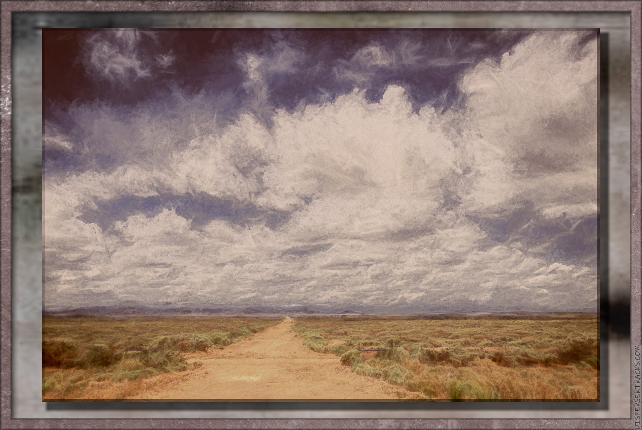 Open country, shrubs and big sky