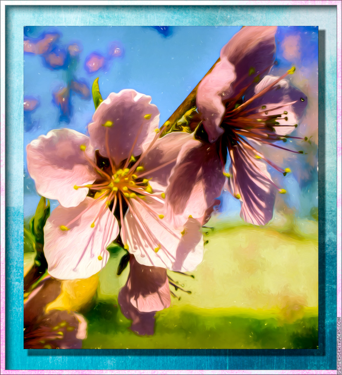 Dogwood tree flowers turned into a framed painting.