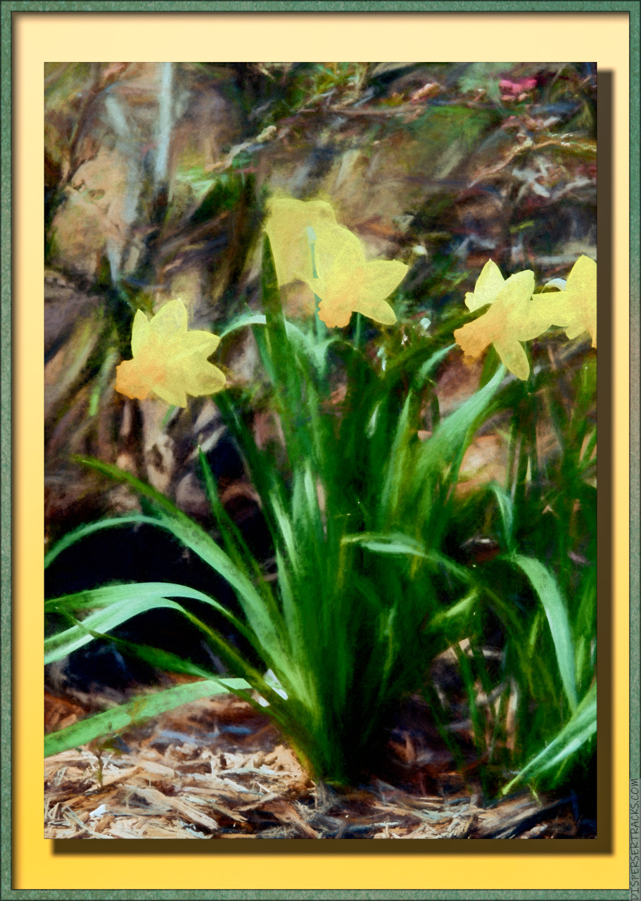 Daffodils turned into a framed painting.