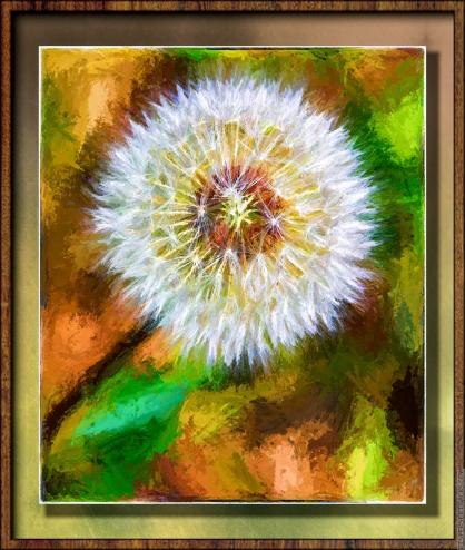 dandelion seedball painting