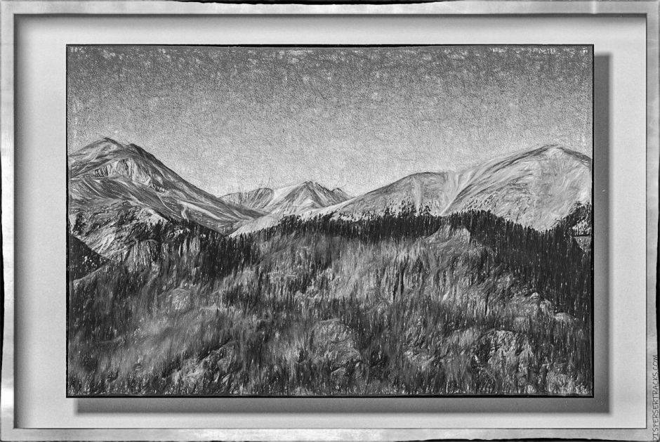 Colorado forest and mountains in monochrome