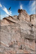 Also at Garden of the Gods (Colorado Springs) — bird and sky courtesy of Luminar 4